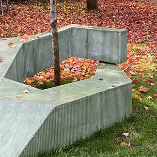 Memorial around a tree